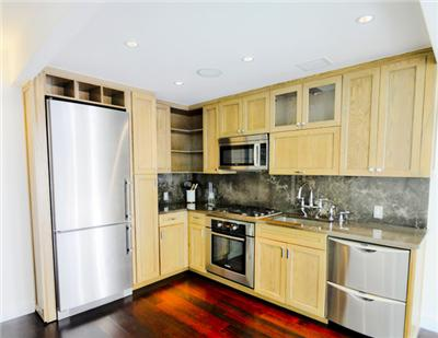 Gorgeous Studio with top of the line appliances and renovation and Ipod Dock