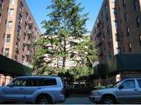 StreetEasy: 1213 Ave. Z #APTC26 - Co-op Apartment Sale in Sheepshead Bay, Brooklyn