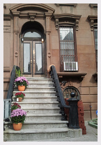 StreetEasy: 323 MacDonough St. #1/GARDEN - Building Apartment Rental in Stuyvesant Heights, Brooklyn