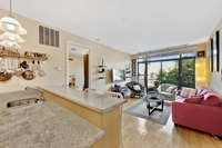 StreetEasy: 246 Withers St. #2C - Condo Apartment Rental in Williamsburg, Brooklyn