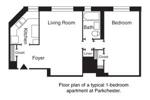 Special Offer on One Bedroom Parkchester Sponsor Apt