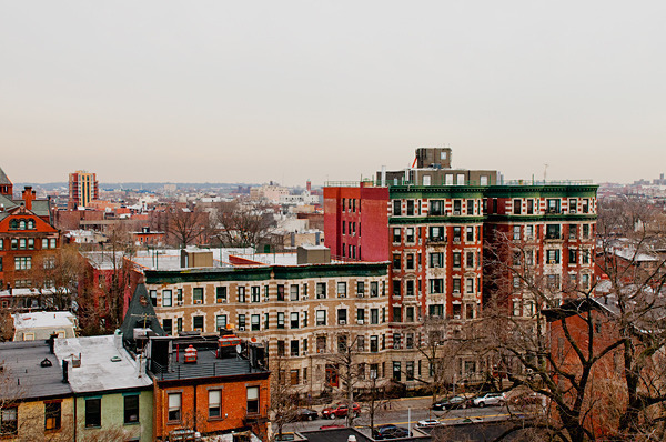 Clinton Hill Coop with Skyline Views