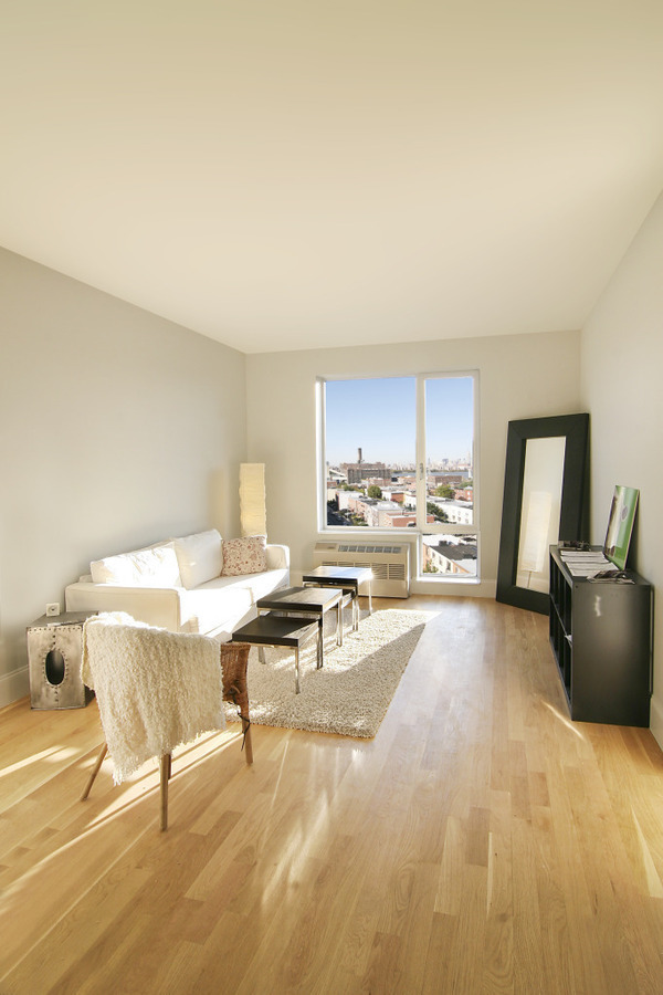 Driggs III- Top Floor Living, in Williamsburg's Finest Bldg- Nov. 2012!