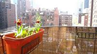 StreetEasy: 325 East 64th St. #5 - Rental Apartment Rental at The Bakery Building in Lenox Hill, Manhattan