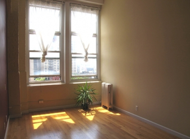 BIG BRIGHT TRUE LOFT WITH WORKING CHEF'S KITCHEN W/D IN UNIT!